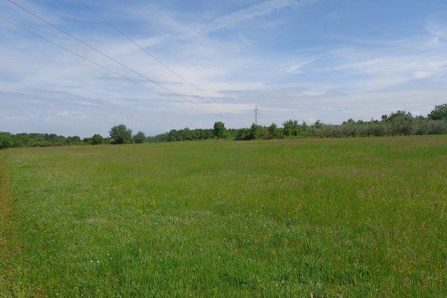 Veliko poljoprivredno zemljište