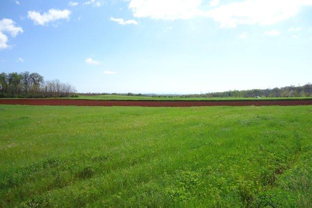 Poljoprivredno zemljište s pogledom na more HITNO