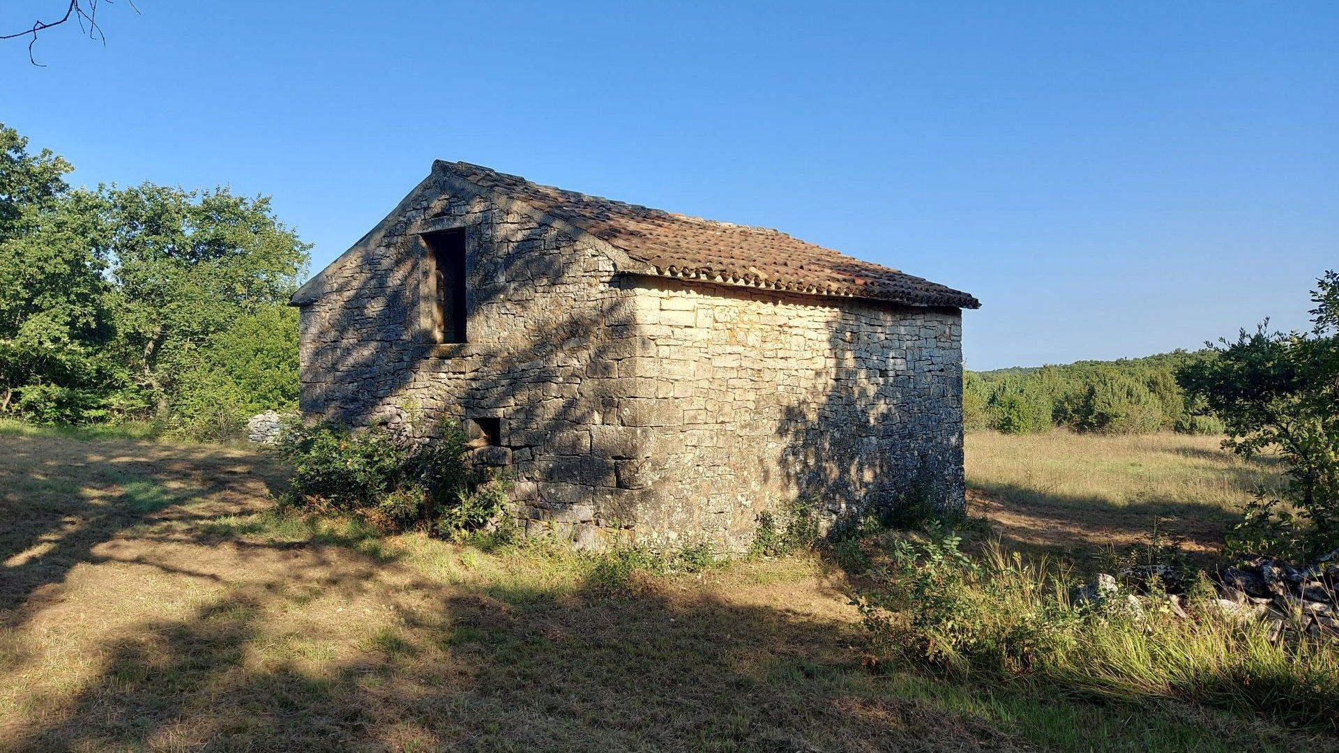Grande opportunità, vendiamo l'intera collina con vista sul mare e con una piccola casa in pietra vicino a Rovigno