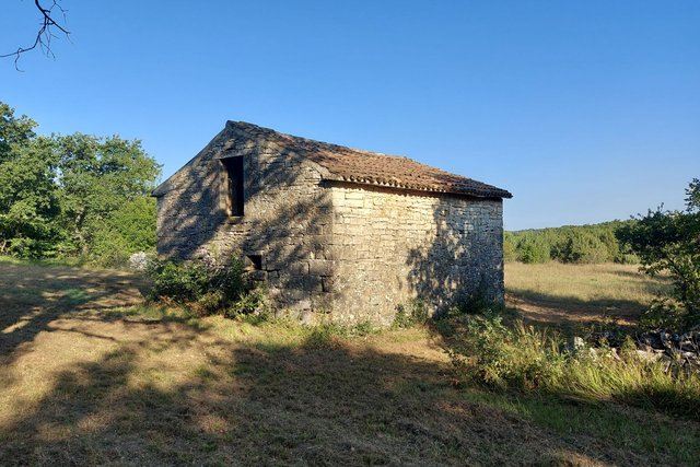 Great opportunity, we sell the whole hill overlooking the sea and with a small house near Rovinj